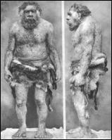 a Neandertal man